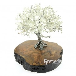Olivo de Plata 19 cm